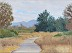 A New Path - New Years Day, Sepulveda Basin by Richard Probert