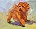 Norfolk Terrier by Mary Beacon