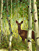 Among the Aspens by Laura Kratz