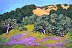 Hills of Lupine by Eileen France