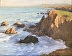 Sonoma Coast by Paulette Alsworth