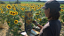 Me painting in sunflowers in France by Rose Irelan