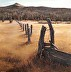 Fence Line #3 by Luverne Lightfoot