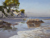 Afternoon Reflections, Shoreline Beach by Ann Self