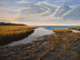 Edge of the Marsh at Low Tide by Jeff Ripple