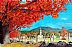 """""""Red Maple Village"""" by Barry Clanton"""