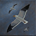 Western Gulls 01 - Canvas Wrapped by Steve Maher