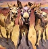 Arizona Chamber of Commerce Welcomes You by Sarah J. Webber Fine Art