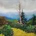 Up On the Roan l by Peggy Duncan