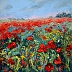 Poppy Delight by Wendy Norton