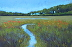 Lowcountry Marsh by J Christopher-Quillen