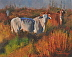 Harvey's Cows by Cheryl Schoenberger