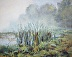 Cattails in Morning Fog by Philip Harris