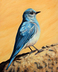 A Bluebird Is a Sign of Joy and Happiness by Corrina Johnson