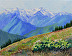 Hurricane Ridge in July by Ines Epperson