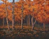 Autumn  (#3559) by Jim Phipps