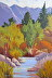 Hermosa Creek in Autumn by judy devincentis morgan