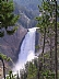Scenes from WY  - Lower Falls, Yellowstone NP by Lou Dennard