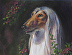 Portrait of a Domino Afghan Hound (detail) by Gayle Rene