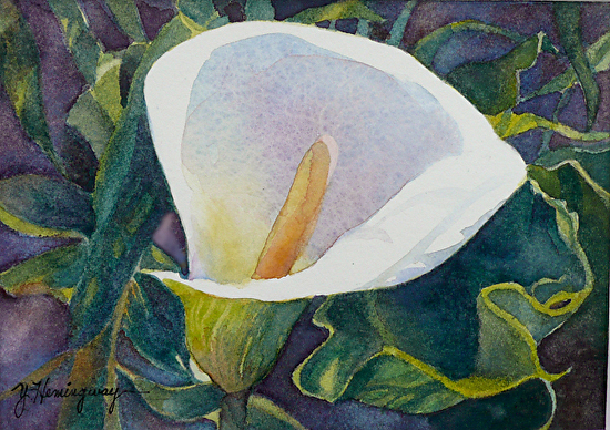 White Calla Lily Watercolor Painting