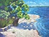 Sheltered Cove by Velda Musgrove