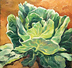 Cabbage Patch by Julia Seelos