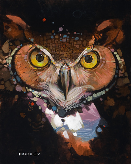 Bill Moomey - Work Zoom: Wise Old Owl