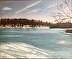 Late Winter on Sinking Ponds by Robert Kull