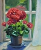 Geraniums In The Sunshine by Cindy Fulks