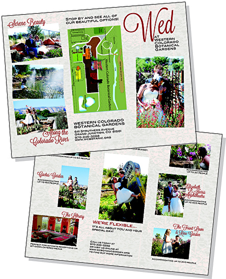 Sheri Ray Work Zoom Layout Design Sample TriFold Brochure
