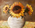 Sunflowers on The Hamptons by Jan Cunningham
