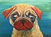 Pug Pup by Lauren Russell