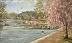 Touch of Spring  Boathouse Row by Mike Kuyper