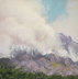 Bighorn Fire 11 June 2020 by Melody Sears