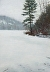 Cushman Pond in Winter by Melanie McGraw