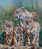 Tiger Family by Leonard Couture