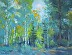 Forest Illusions, 18x24, Oil, Jan.-2018, Libby Creek area, WY by Andrea Gabel