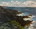 Big Island View by P.L. Hedden