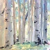 Oh The Aspens by Sally Mitchell