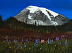 MOUNT RAINIER SPLENDOR by Michael Cadieux