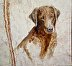 2170014 Lab, Oil on Marble 10-27-2015 by Donald Goodearl
