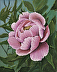 Pretty in Pink Peony by Denise Wood