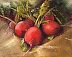 Molly's Radishes by Ruthie Windsor-Mann