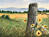 Country Fence with Sunflowers by Steve Hewson