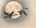 Wild Geese that Fly with the Moon on their Wings by Susan Van Atta