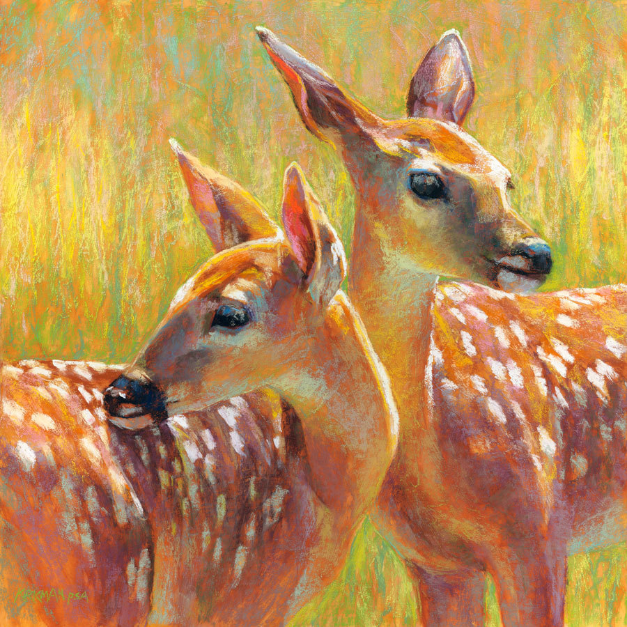 Twin Fawns II Ритой Киркман Пастель ~ 18 x 18 дюймов