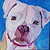 Portrait of Lacy by Julie Kennelly