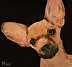 Max wrapped canvas by Linda Godbold