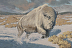 """""""Great Spirit of the White One"""" by Brian Bateman"""
