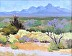 The Road to Searchlight, NV  by Karen Crowell
